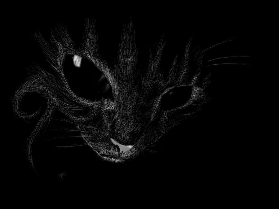 El ropero maldito - ojos de gato negro