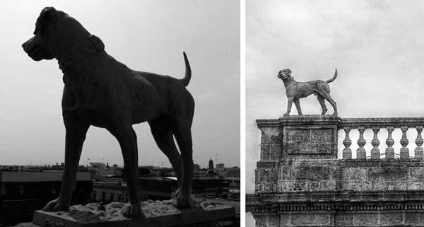 Estatua de los perros - lugares embrujados